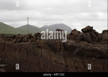 drying clumps of Turf peat cut next to the cut seam in a peat bog in Connemara County Galway Republic of Ireland - Stock Photo