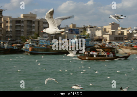Passenger Boat at Dubai Creek. - Stock Photo