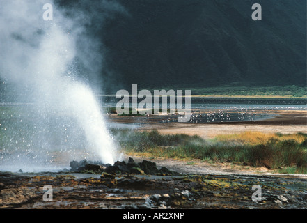Hot springs geysers and steam jets at Lake Bogoria National Park in the Great Rift Valley Kenya East Africa - Stock Photo