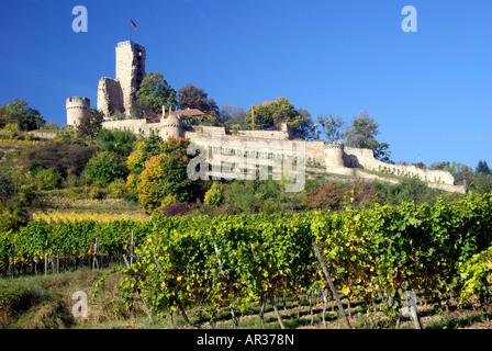 Wachtenburg Castle on the German Wine Road - Stock Photo