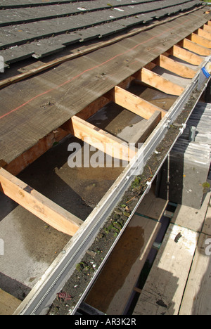 Roof repair in progress to under felt & battens below eaves tiles on house where felt has deteriorated at gutter - Stock Photo