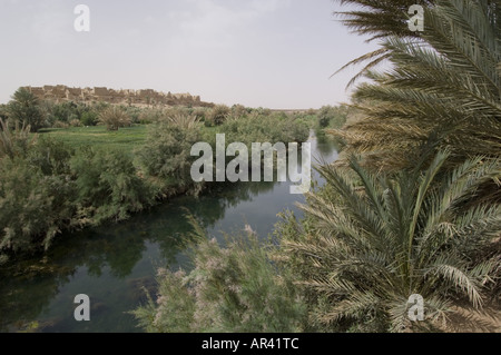 Source bleue de Meski, Oasis of Meski near Er Rachidia, Morocco - Stock Photo