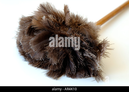Broom made of peacock feathers - Stock Photo