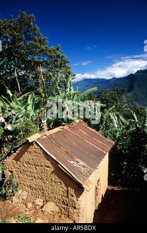 THE YUNGAS  CORDILLERA REAL  BOLIVIA - Stock Photo