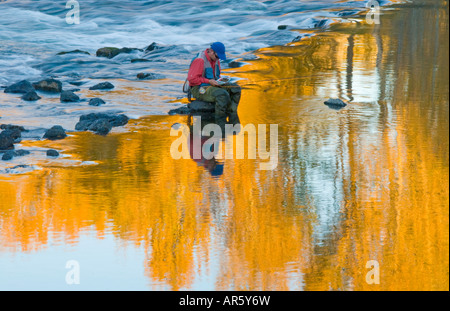 Idaho City of Boise Fly fishernman fishing on the Boise River in the fall - Stock Photo