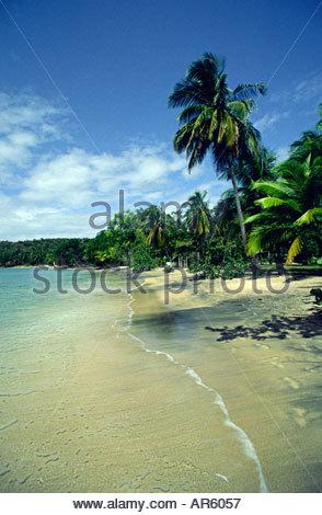 Lance Aux Epines Grenada West Indies - Stock Photo