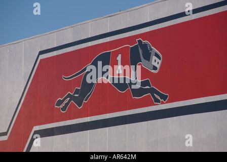 Sarasota Kennel Club Florida Greyhound Racing dog track racing parimutuel betting  pari-mutuel gaming wager gambling - Stock Photo