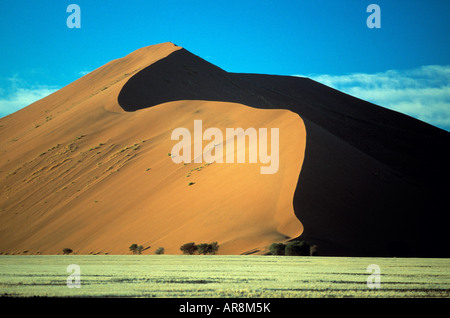 sand dune in the namibian desert - Stock Photo