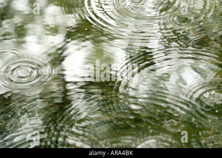 Ripples of Rain Drops in River Summer 2007 - Stock Photo
