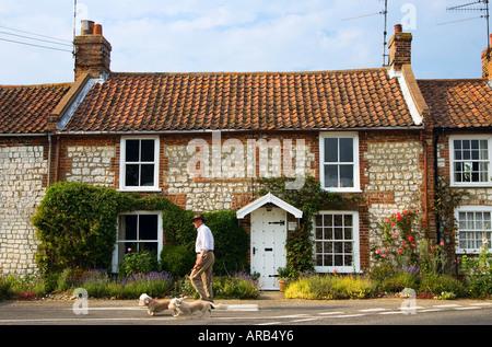 Man walks his dogs past typical brick and flint Norfolk home near Burnham Market UK - Stock Photo
