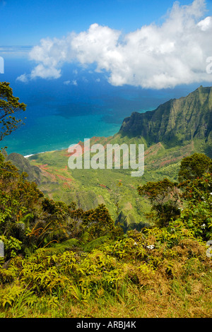The steep green canyons and tropical vegetation at the Napali Costs on top of the Weimea Canyon State Park on Kauai, - Stock Photo