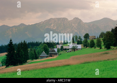 Typical Polish landscape near Zacopane, Tatra Mountains, Poland, Europe - Stock Photo
