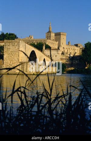 The River Rhone at Avignon, Provence, France - Stock Photo