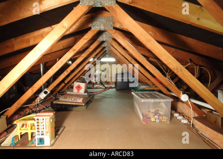 Domestic Dwelling Loft Space Low Roof Pitch Showing Timber
