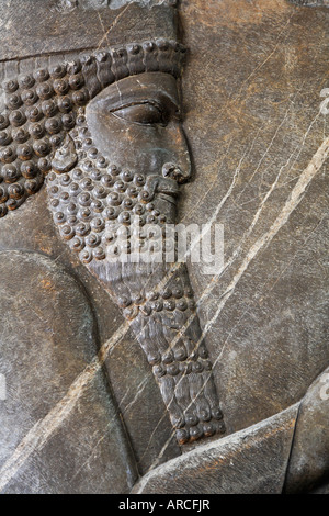 Exhibit from Persepolis at the National Archaeological Museum in Tehran Iran - Stock Photo