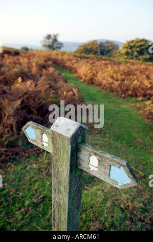 A footpath signpost on the Offa s Dyke Path on the English Welsh border in the UK - Stock Photo