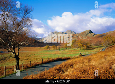 Langdale Pikes from Blea Tarn, Lake District National Park, Cumbria, England, UK