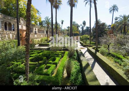 The gardens of the Real Alcazar, Santa Cruz district, Seville, Andalusia (Andalucia), Spain, Europe - Stock Photo