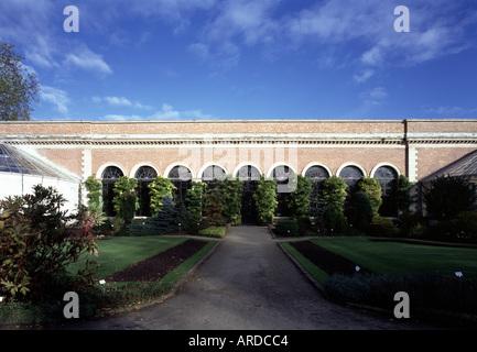 Löwen, Botanischer Garten, Orangerie - Stock Photo