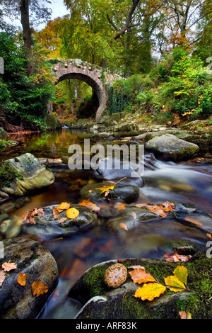 Foley's Bridge, Tollymore forest park.