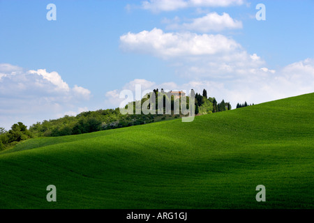 Hillside near Asciano, Tuscany, Italy - Stock Photo