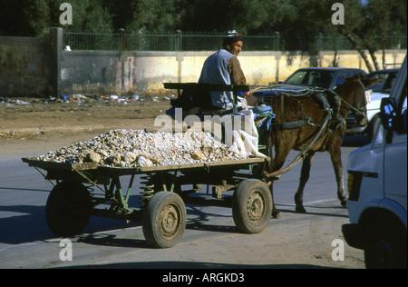 Man carrying Stones Beni Mellal Tadla-Azilal Middle Atlas Morocco Maghreb Maghrebian Berber Arab Arabic Moroccan - Stock Photo