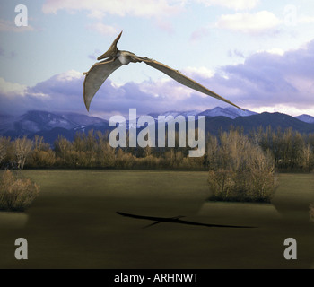 dinosaur Pteranodon - Stock Photo