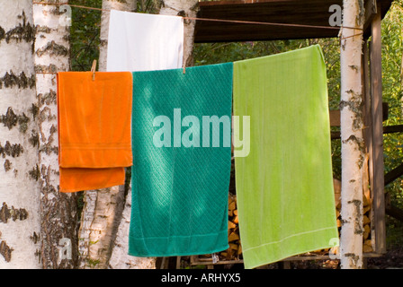 coloured sauna towels hanging on a line between birches - Stock Photo