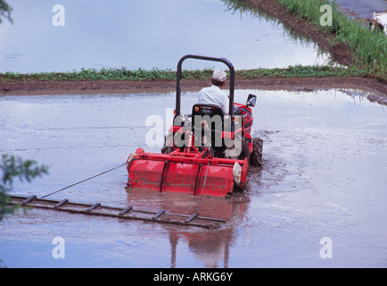 Rice paddy with a rice planting machine, Japan - Stock Photo