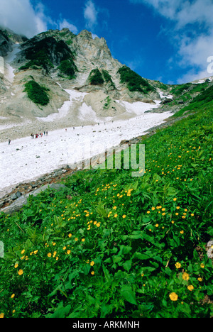 Hikers en route to Mt. Hakuba Glacier, Northern Alps, Japan - Stock Photo
