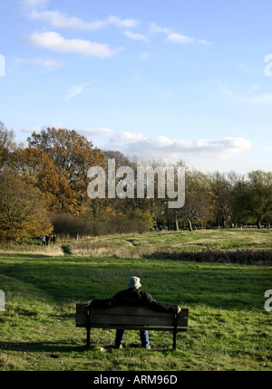A man on a bench looking over Hampstead Heath - Stock Photo