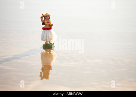 Pacific hula girl standing on wet sand on beach - Stock Photo