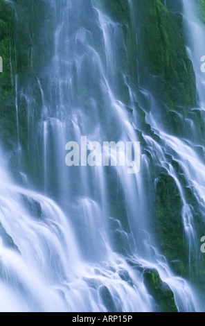 USA, Oregon State, Proxy Falls, tight, abstact image of the water fall. - Stock Photo