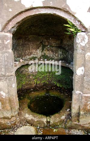 St Ann s Well The Virtuous Well Trellech - Stock Photo