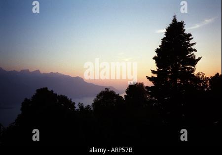 Lake Geneva, Switzerland. Trees silhouetted against pink sunset sky and view over Lake Geneva. - Stock Photo