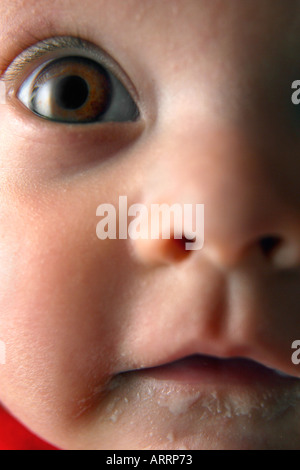 Baby is wide-eyed and bushy-tailed. - Stock Photo