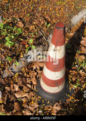 one traffic cone on leaf covered street - Stock Photo