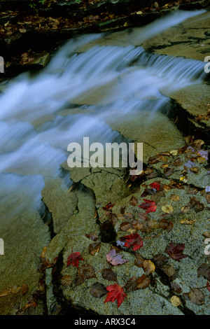 NEW HAMPSHIRE, USA White Mountains, Crawford Notch State Park, Bemis Brook, waterfall detail - Stock Photo