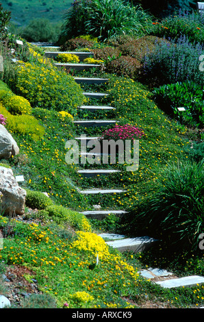 Stairs In Garden Yampa River Botanic Park Steamboat Springs Colorado Stock Photo Royalty Free