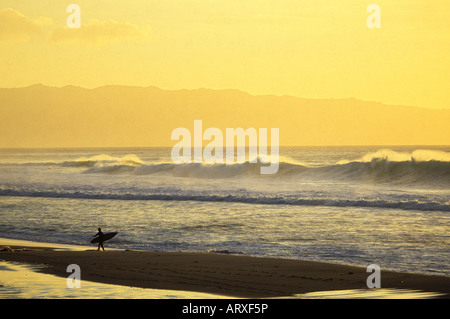 Surfer at sunset walking along Ehukai Beach with his surfboard fronting the Banzai Pipeline shore break, north shore - Stock Photo