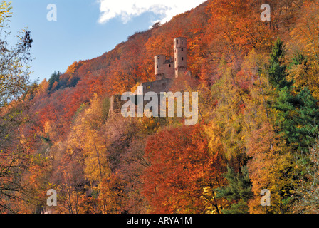 Castle Schadeck in Neckarsteinach, Hessen, Germany - Stock Photo