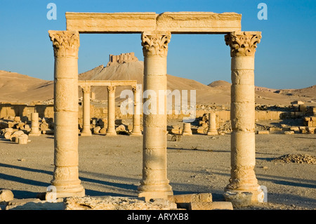 The Arab Castle, Qalaat Ibn Maan, overlooks the ruins of ancient Tadmor, Palmyra, Central Syria, Middle East. DSC - Stock Photo