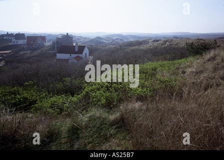 Bergen aan Zee, Dünenlandschaft, - Stock Photo