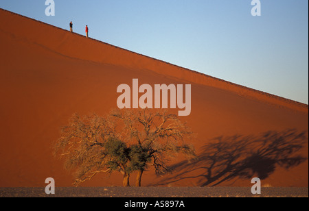 Early morning sun lights Dune 45 travellers heading down from top Namib Naukluft National Park Namibia - Stock Photo