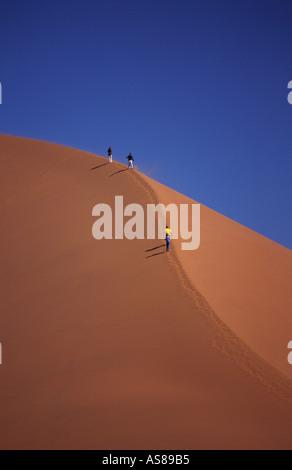 Dune 45 travellers climbing the sand dune Namib Naukluft National Park Namibia - Stock Photo