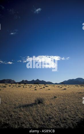 Scrub landscape en route to Sossusvlei Namib Naukluft National Park Namibia Early morning - Stock Photo