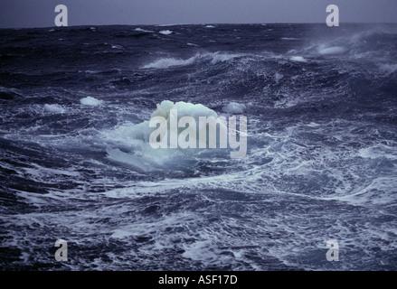 Small iceberg growler bergy bit in rough icy sea Ross Sea Antarctica - Stock Photo