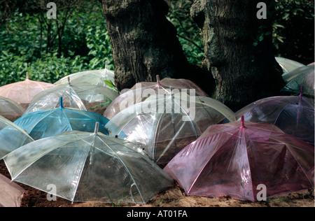 Ornamental umbrella arrangement at Keukenhof Spring Gardens South Holland The Netherlands