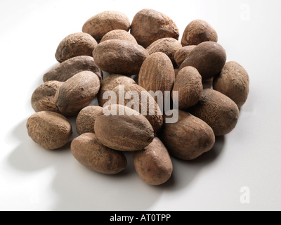 Pile of Shea Nuts - Stock Photo