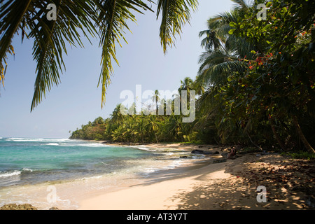 Costa Rica Caribbean Coast Manzanillo sandy palm fringed beach - Stock Photo